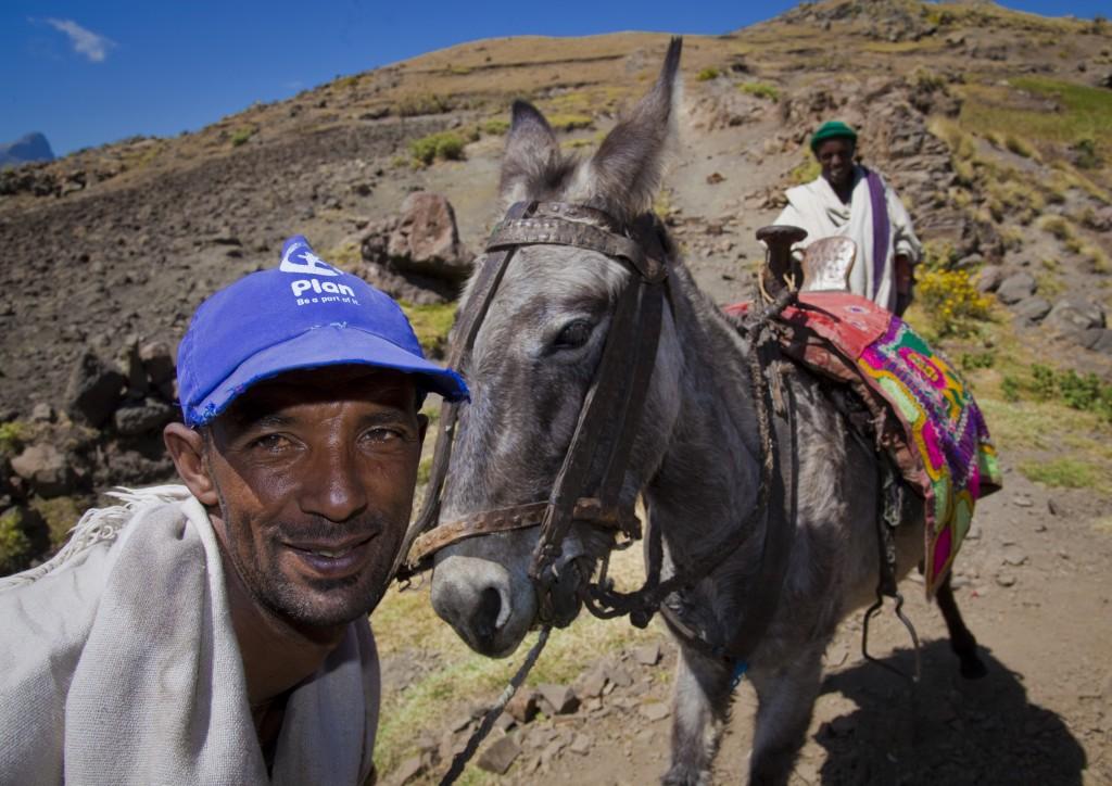 ethiopia mule