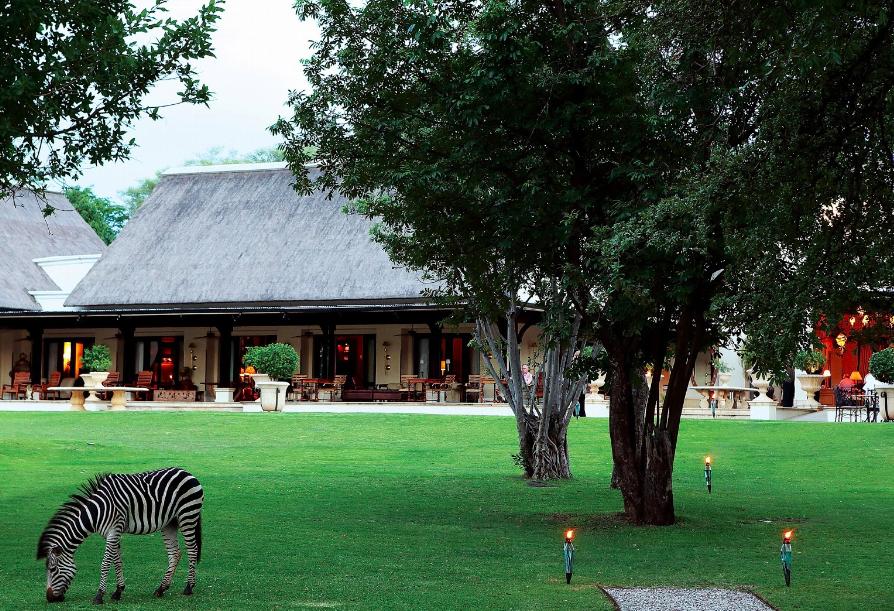 royal-livingstone-hotel-zambia-zebra
